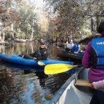 Congaree National Park (via canoe)