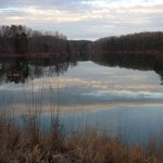 Lake Russell Wildlife Management Area